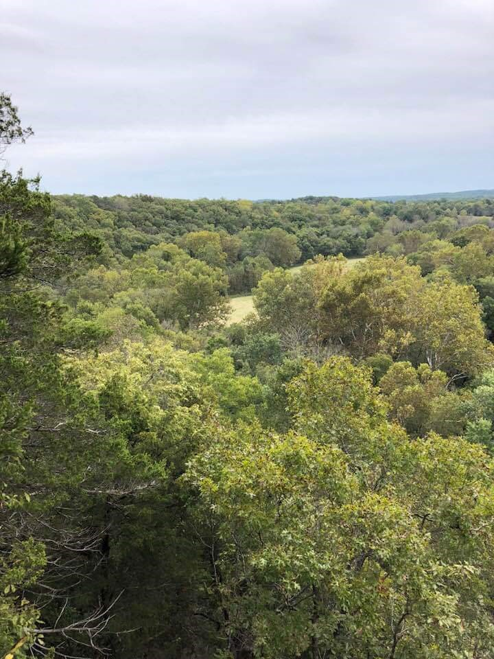 Riverfront Property - Marketable Timber - Texas County, MO