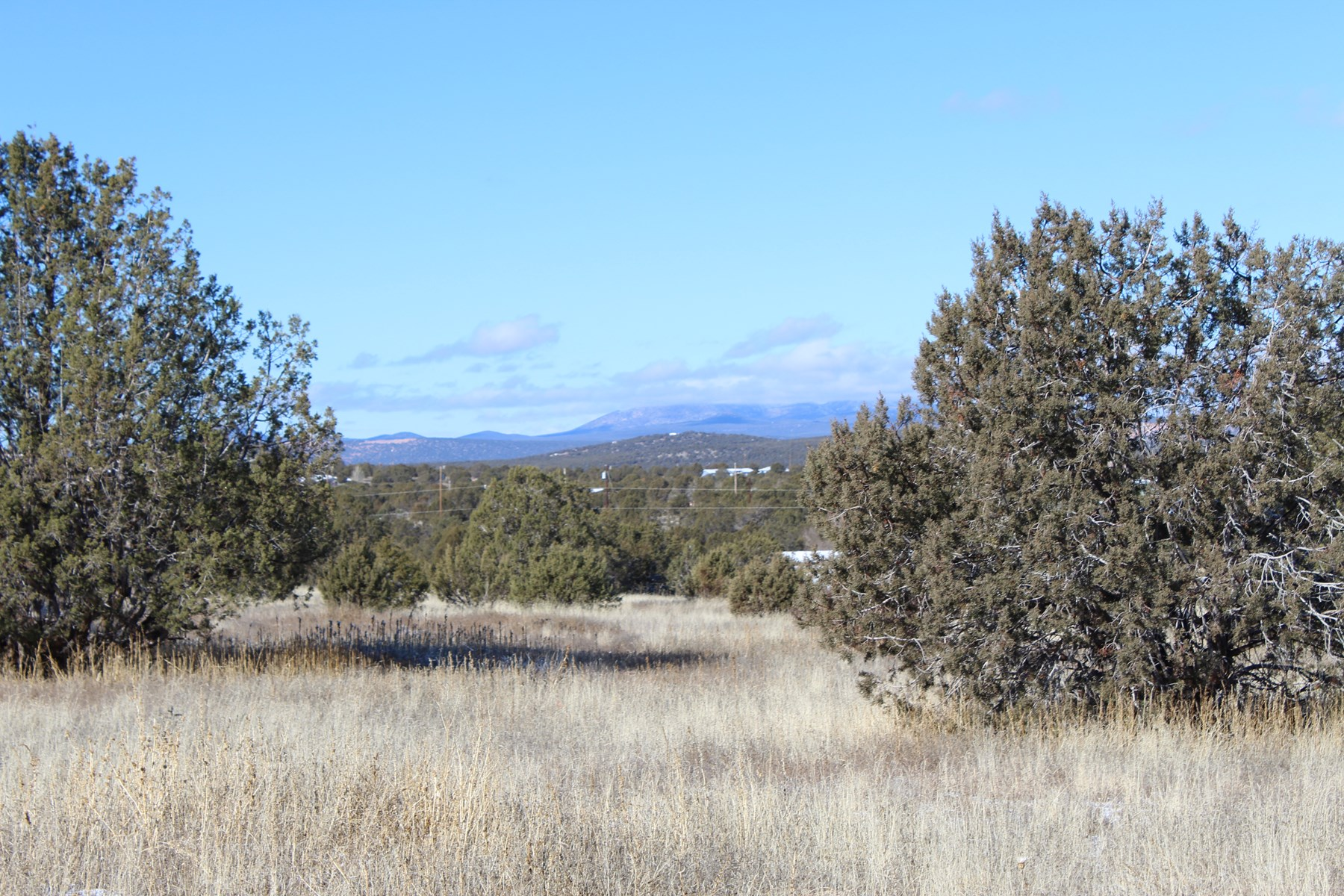 Acreage with Power for Sale North of Ashfork, AZ