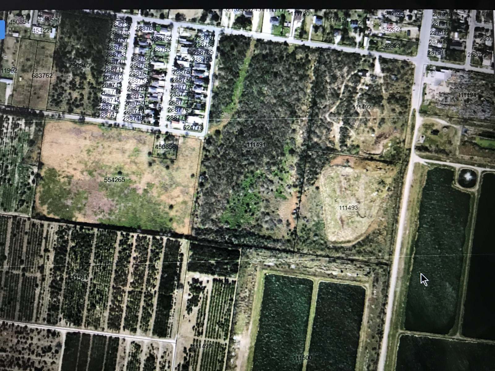 South Texas Land For Sale