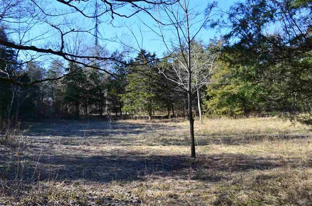 20 Acres Gorgeous Mountain Property in Sneedville, TN
