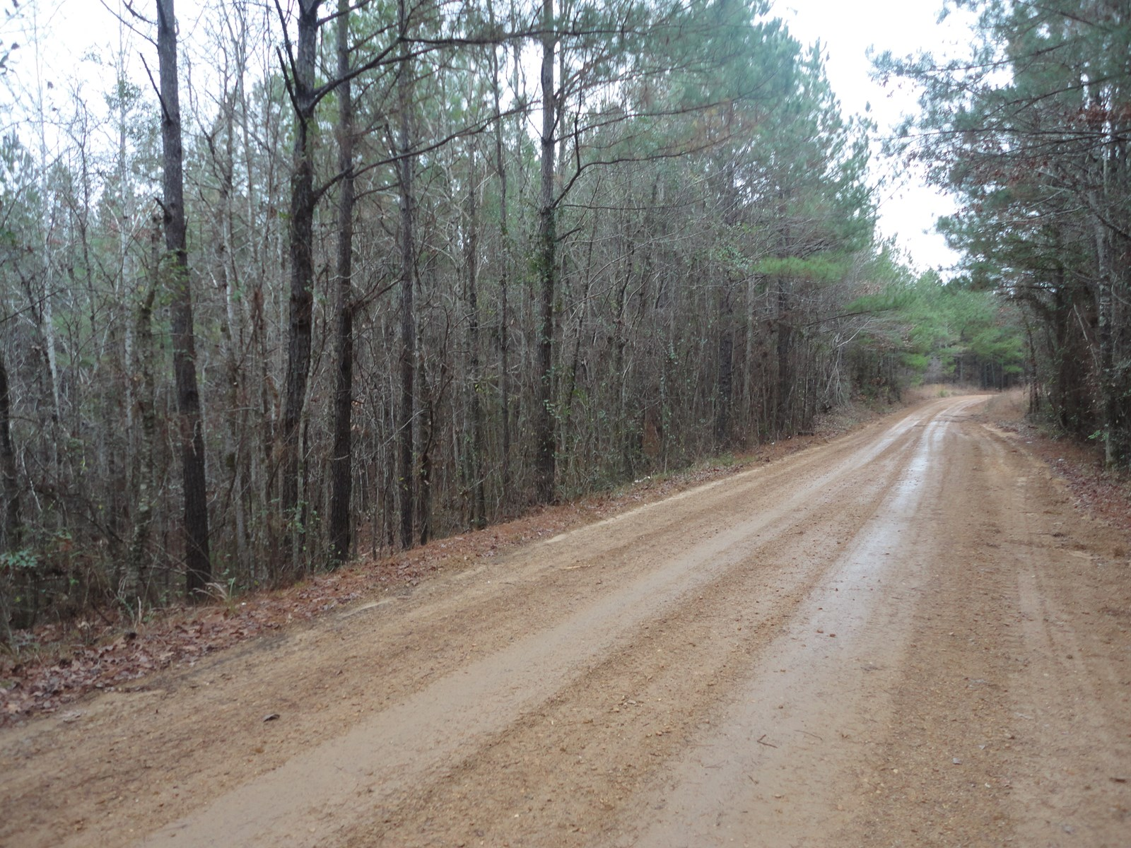 Land For Sale 10 Acres Lincoln County Brookhaven Mississippi