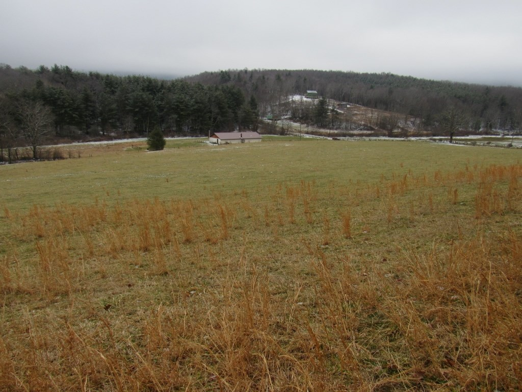 Pasture Land for Sale in Floyd VA