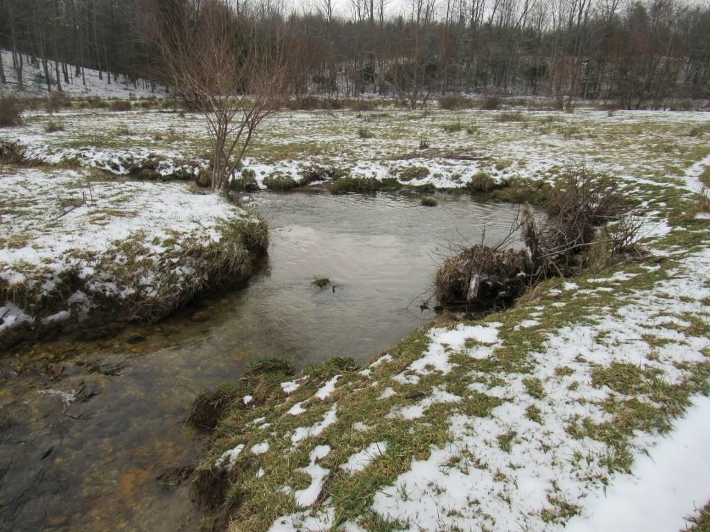 Recreational Land for Sale in Floyd, VA
