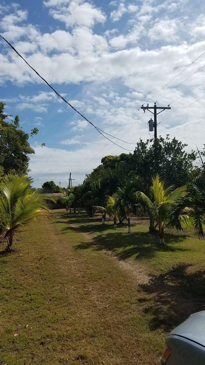 farm near the beach