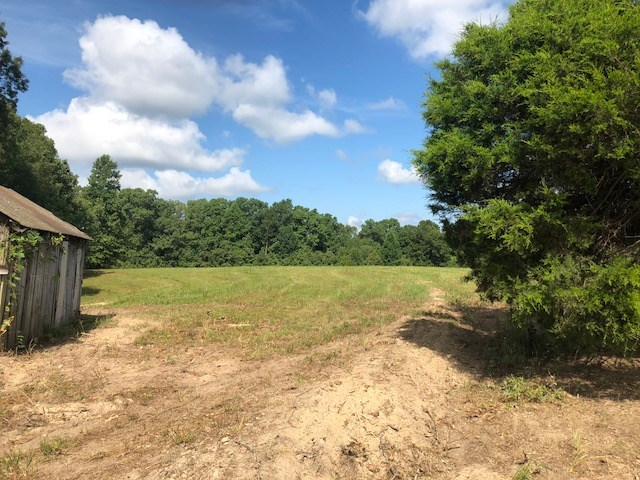 Williamson County, TN building lot for sale
