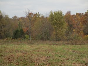 VACANT LAND FOR SALE IN THE MISSOURI OZARKS