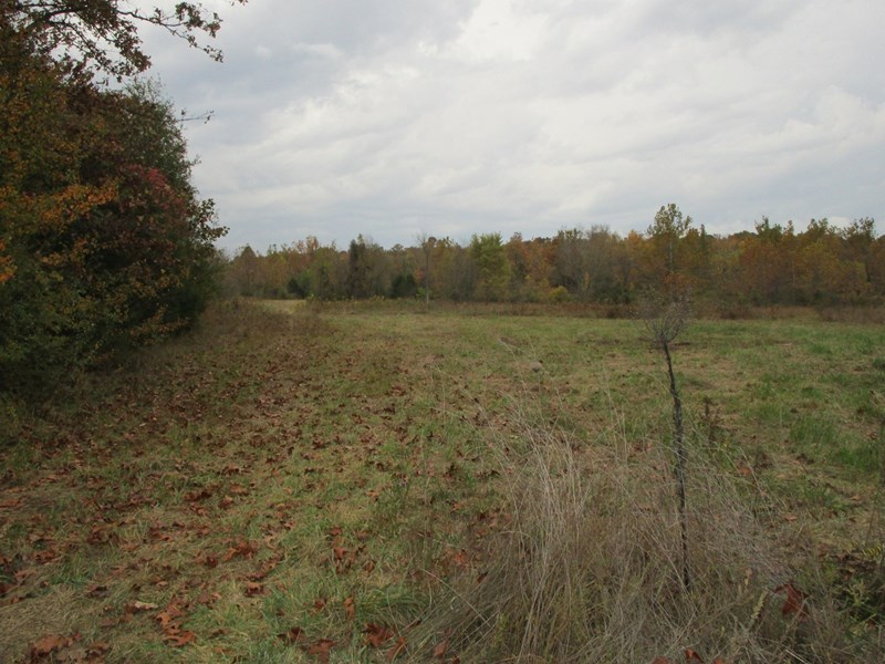 Prime Hunting Land for Sale