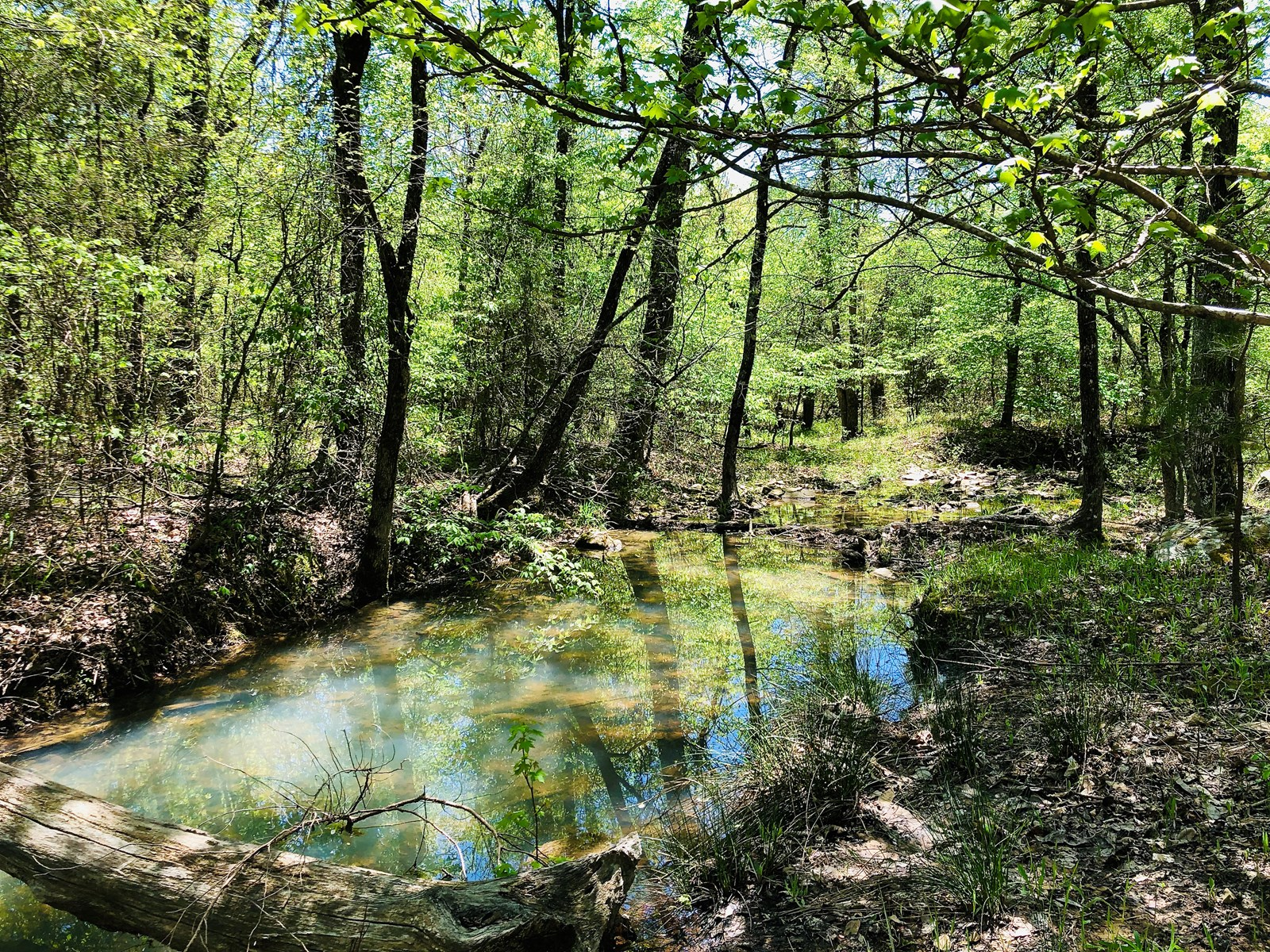 Oklahoma Hunting Land for Sale in Pushmataha County