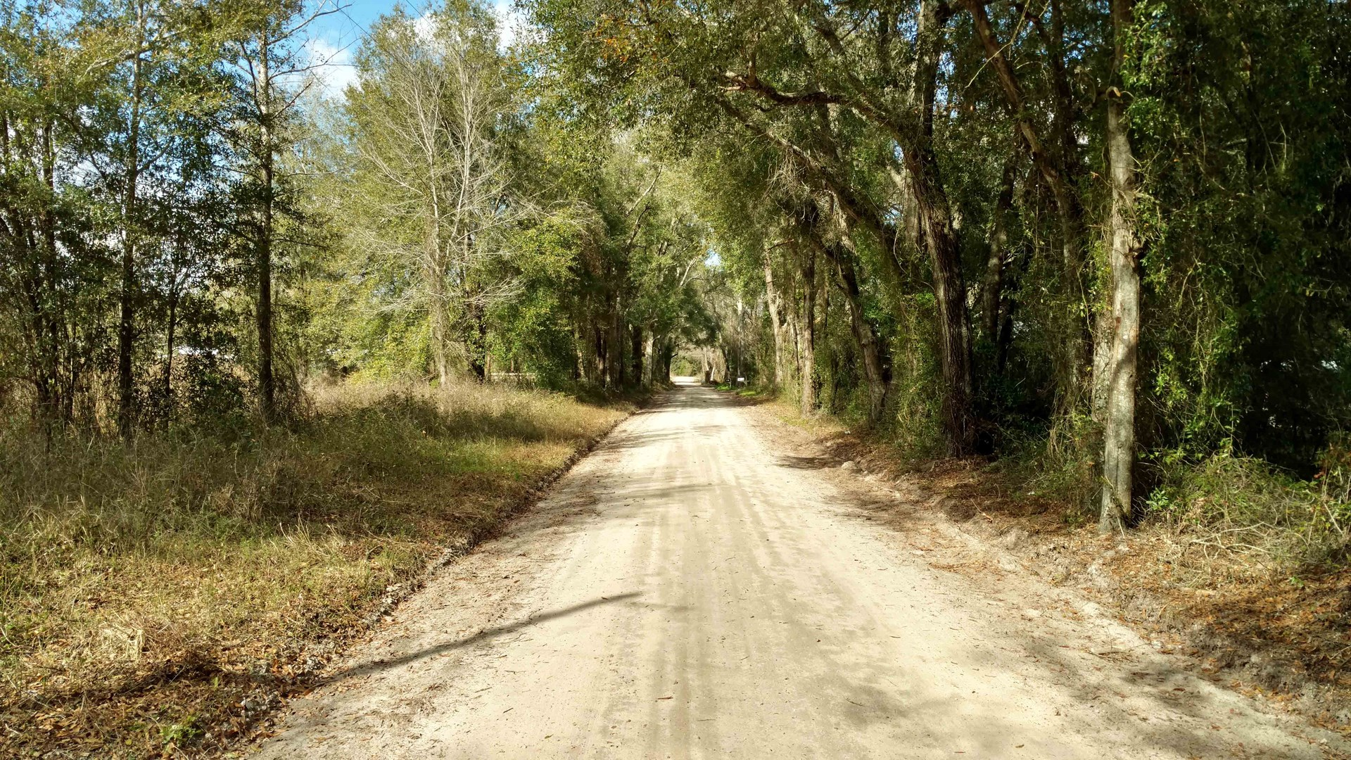 4 ACRES OF LAND FOR SALE IN SUWANNEE COUNTY