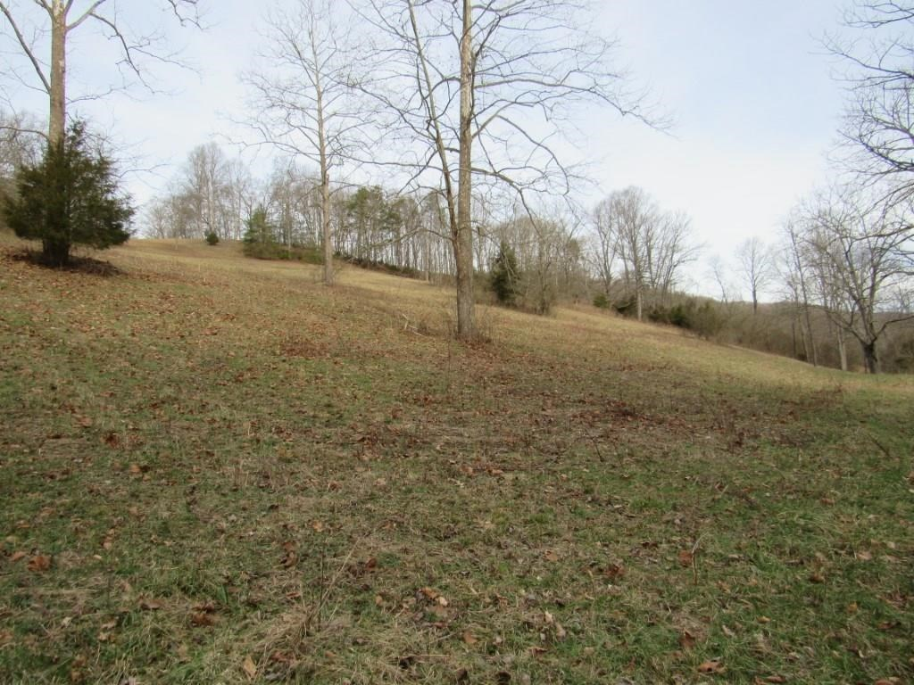 Recreational Farm Land For Sale In Mendota VA