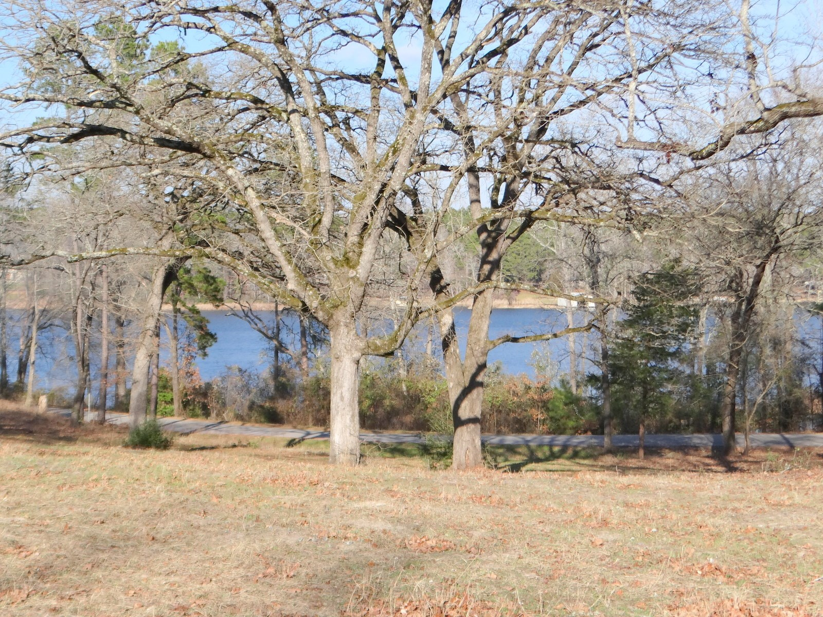 LAKEFRONT LOT EAST TEXAS LAND LAKE HAWKINS TEXAS BUILD HERE