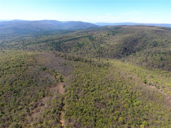 917 ACRES ON KIAMICHI MOUNTAIN SURROUNDED BY NATIONAL FOREST
