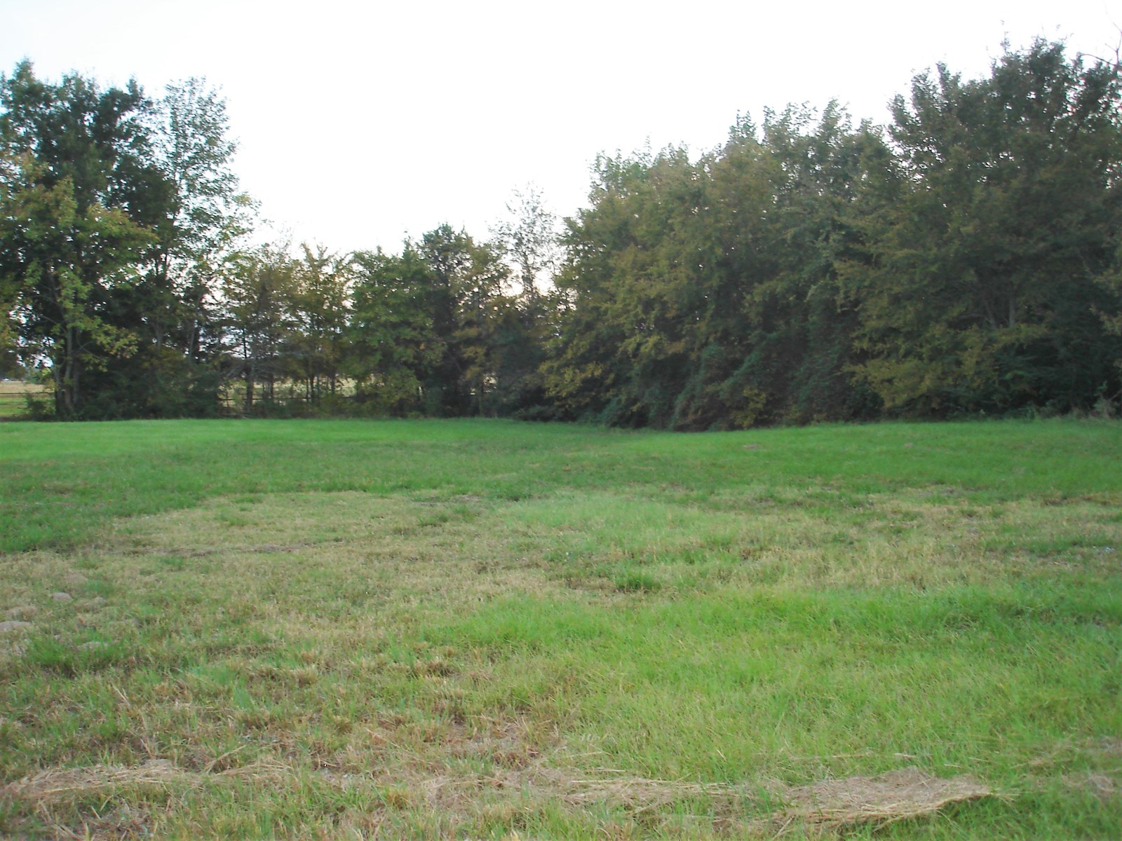 Country Home Investment Land For Sale Detroit Texas