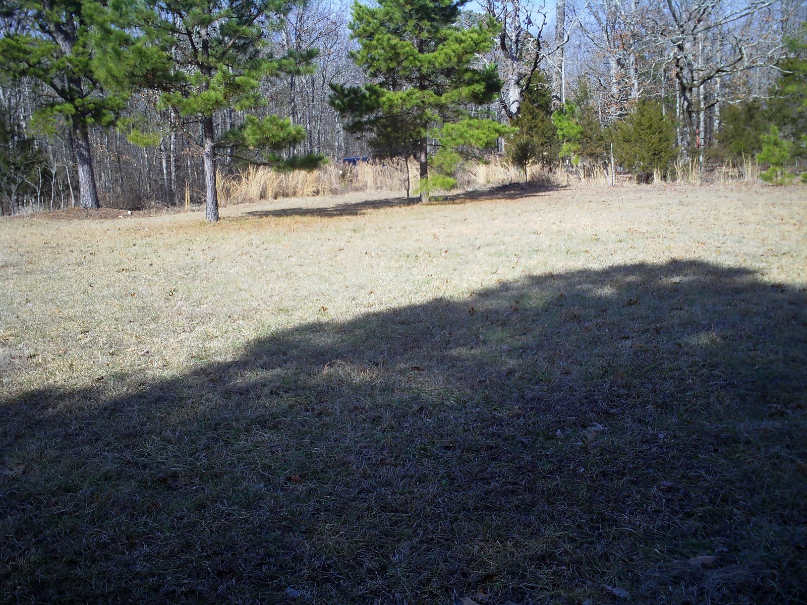 GREAT HOME SITE PLUS HUNTING AND RECREATIONAL PROPERTY