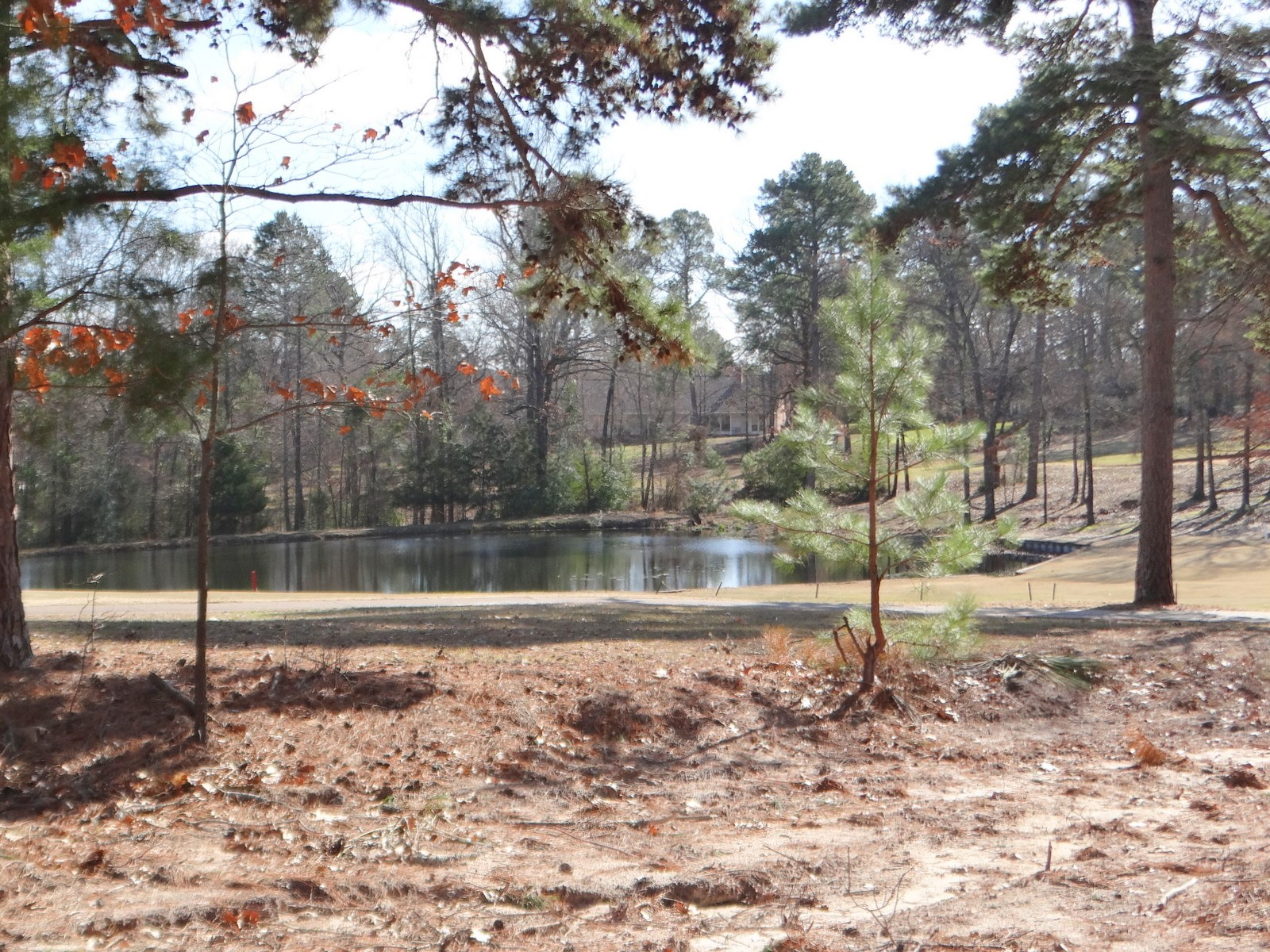 GOLF COURSE LOT IN HOLLY LAKE RANCH TEXAS FOR SALE