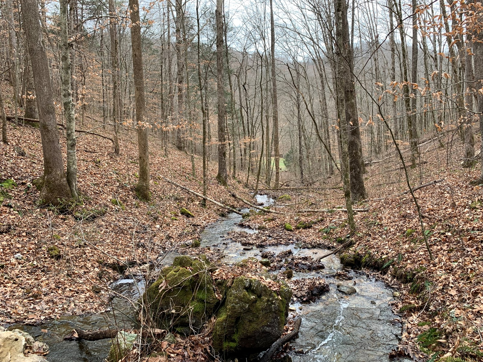 East Tennessee Recreational &Hunting Land Claiborne County