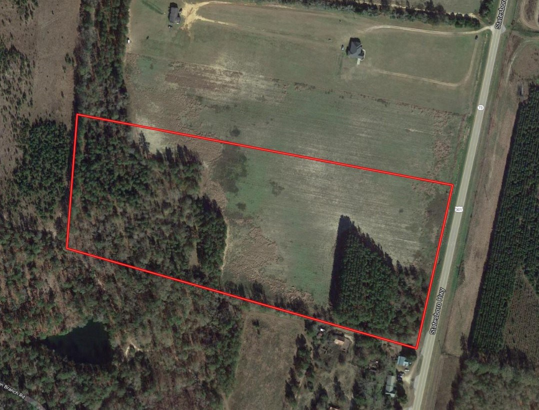 20 Acre Tract in Screven County, Georgia