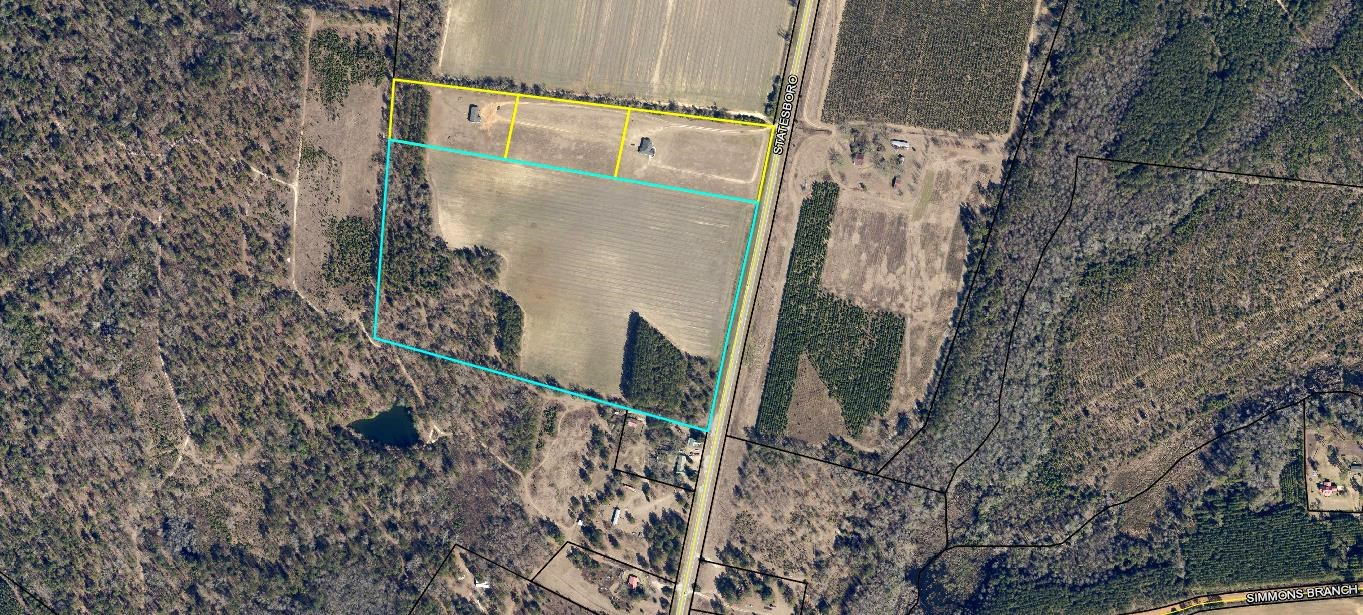20 Acre Tract in Screven County, Georgia