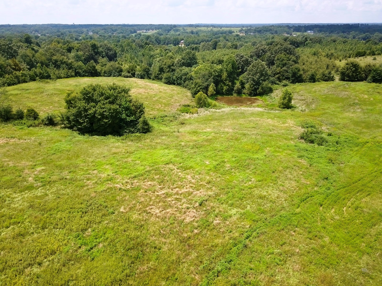 Recreational or Farm Ground, Pasture Land For Sale - West TN