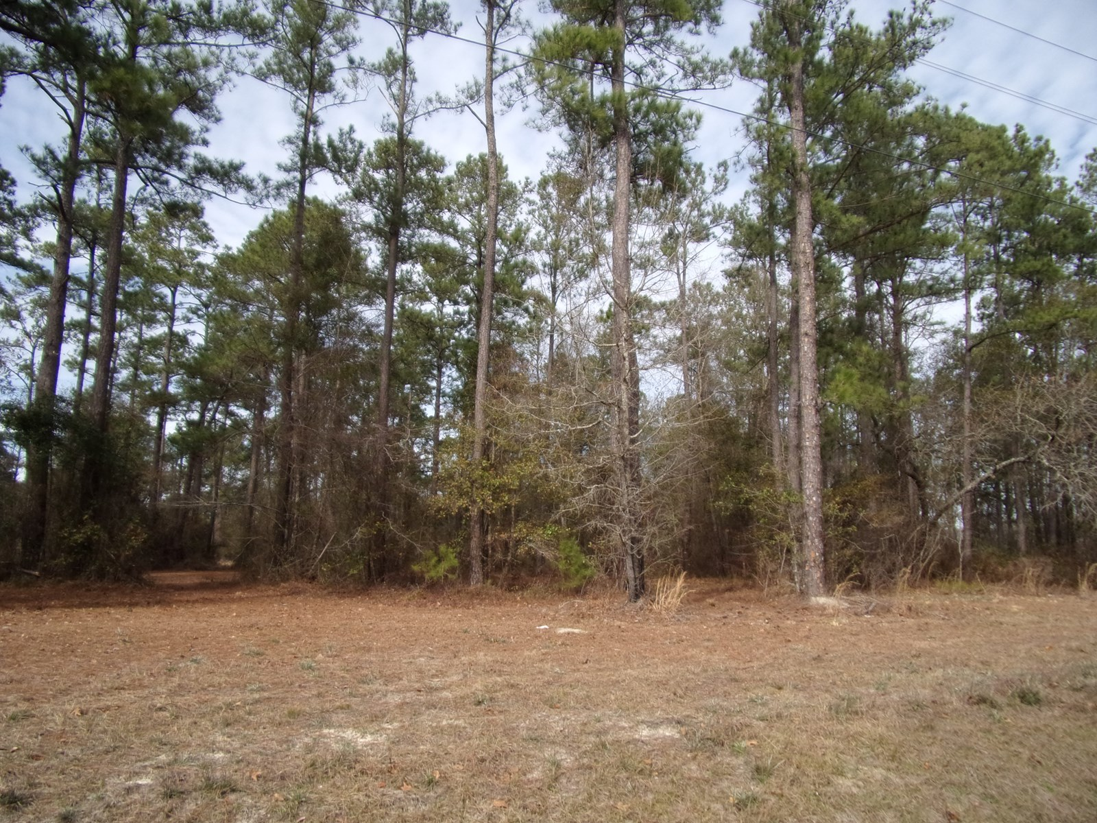 35 Acres for Residential or Commercial use in Bryan County