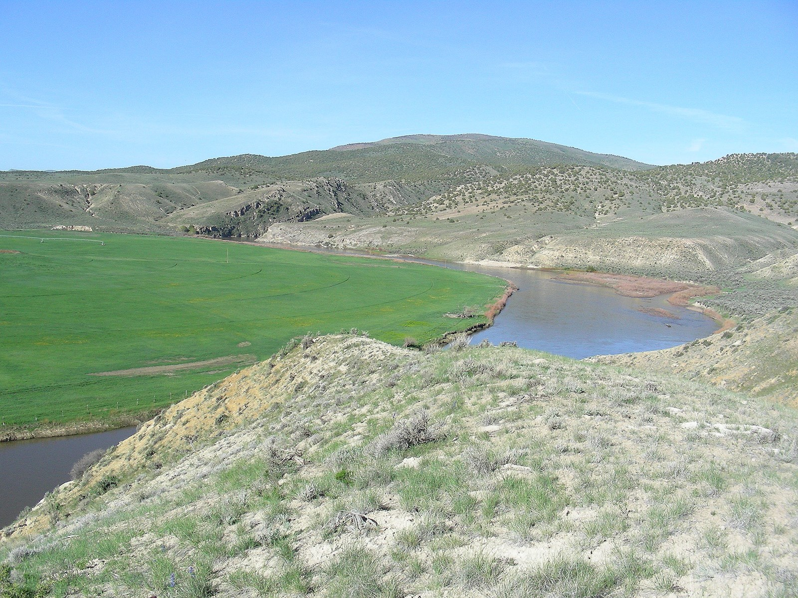 Yampa River Cattle and Hunting Ranch For Sale in Maybell, CO
