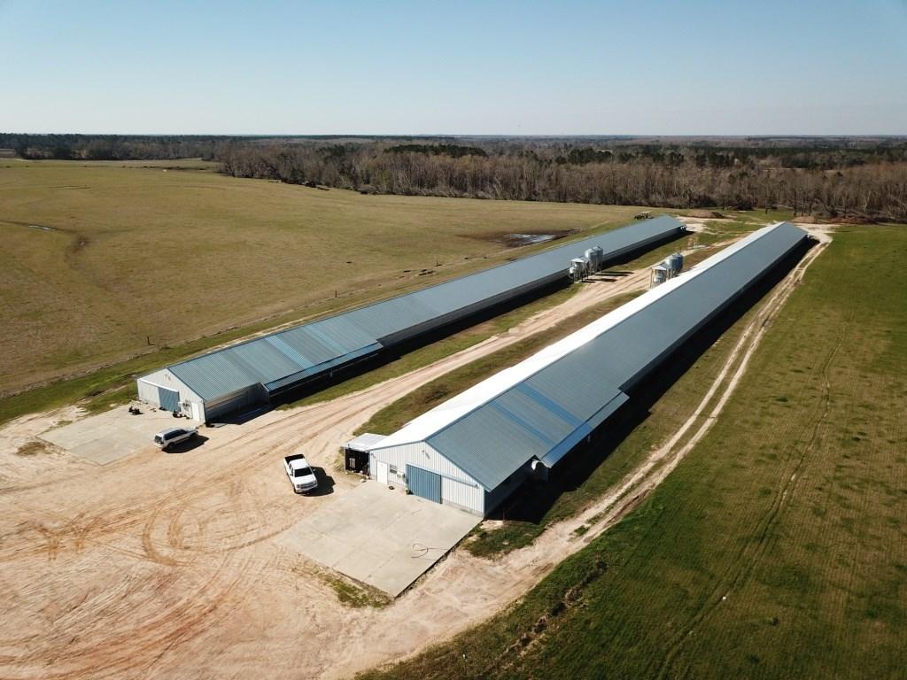Poultry Farm in Houston County, Alabama