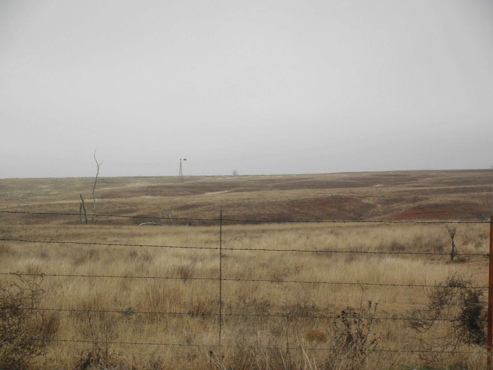 LAND FOR SALE NEAR SENTINEL IN WESTERN OKLAHOMA