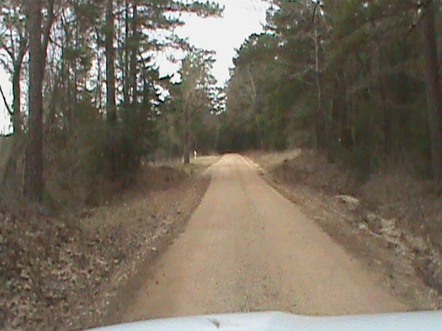 East Texas Recreational, Hunting Land, Timber