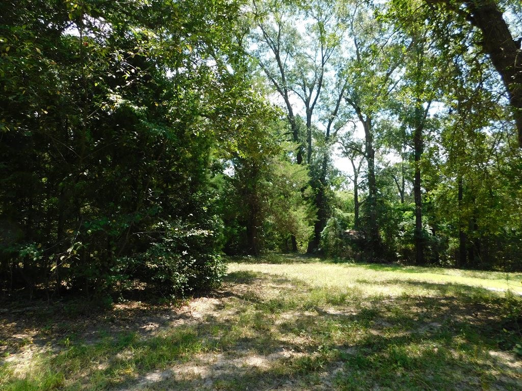 15.5 WOODED ACRES, PRIVATE, PEACEFUL & CLOSE TO LAKE !