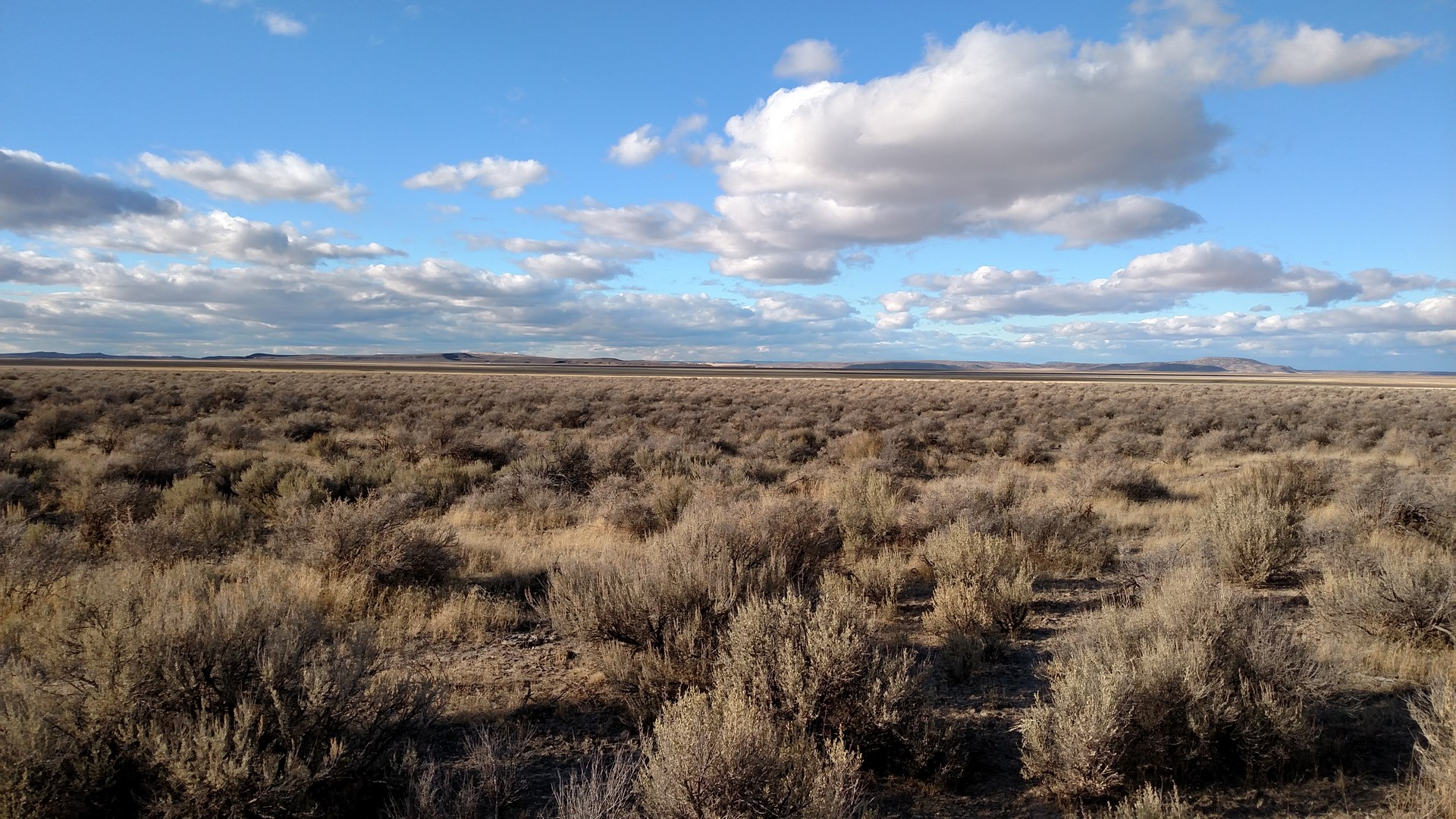 80 ACRES - RECREATIONAL PROPERTY SOUTH OF BURNS OR
