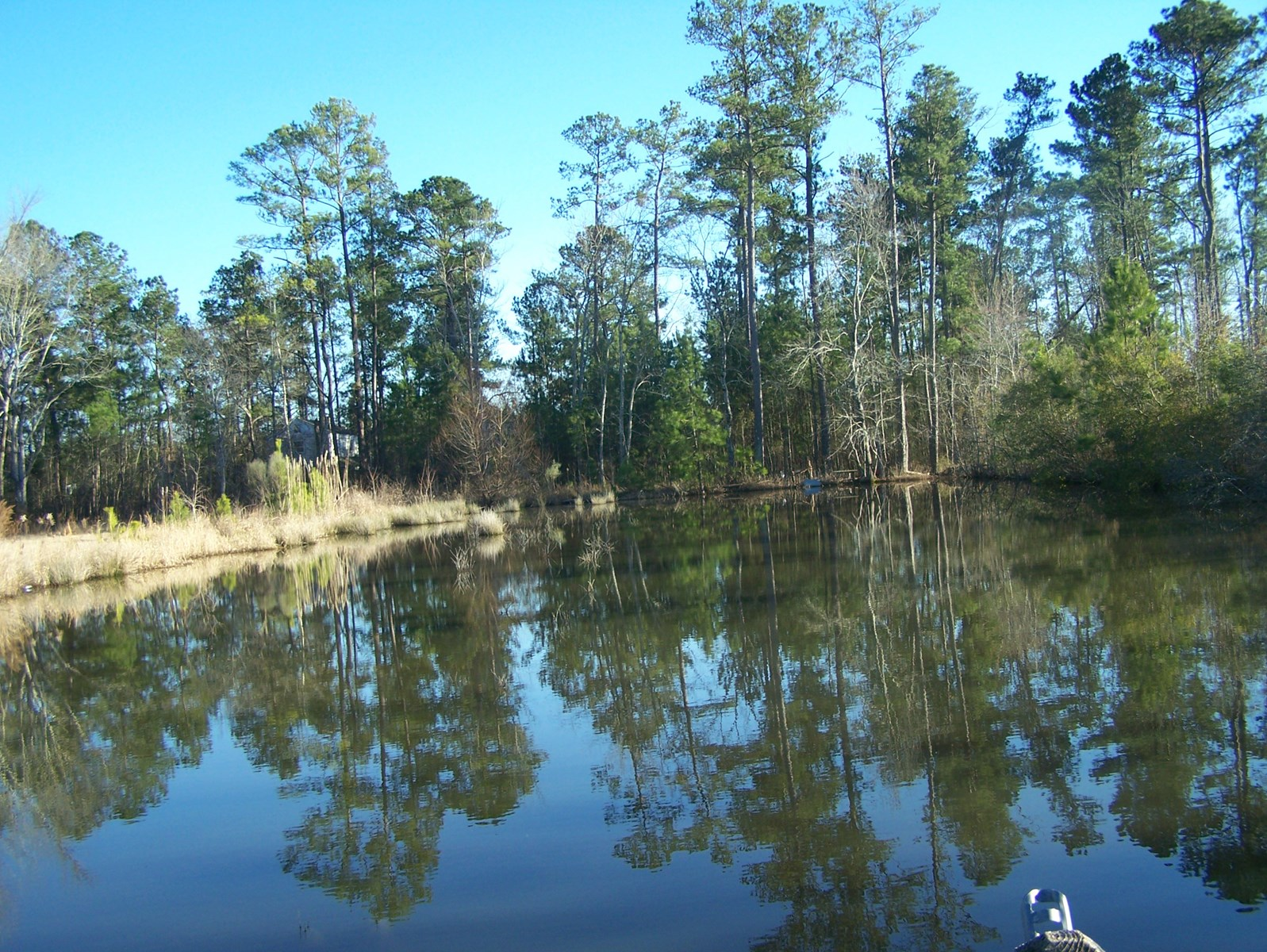 Camden, SC Building Site w/ Pond, Dock & Utilities in Place