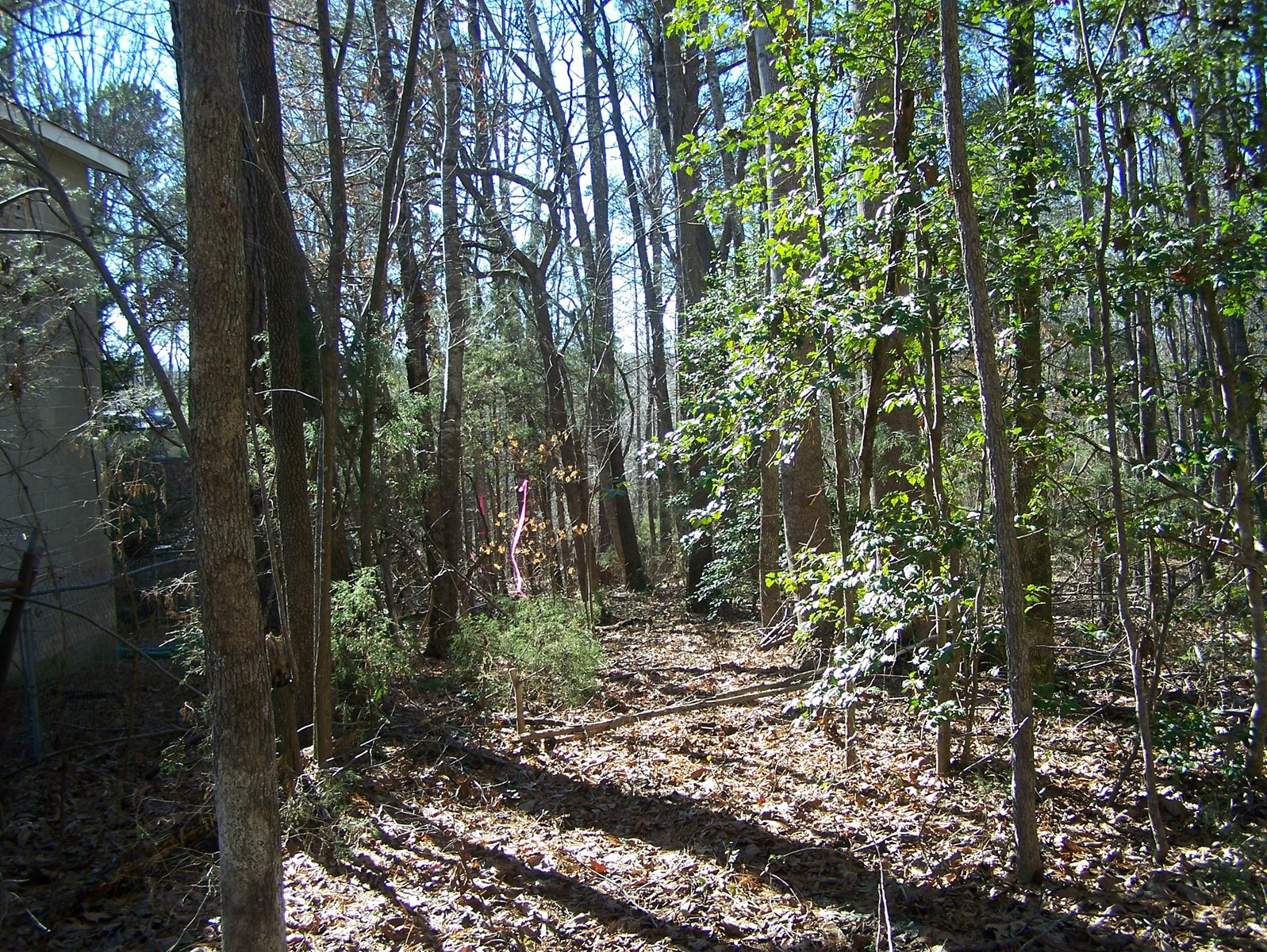 Country Building Lot Only 4 Miles from I-77, Great Falls, SC