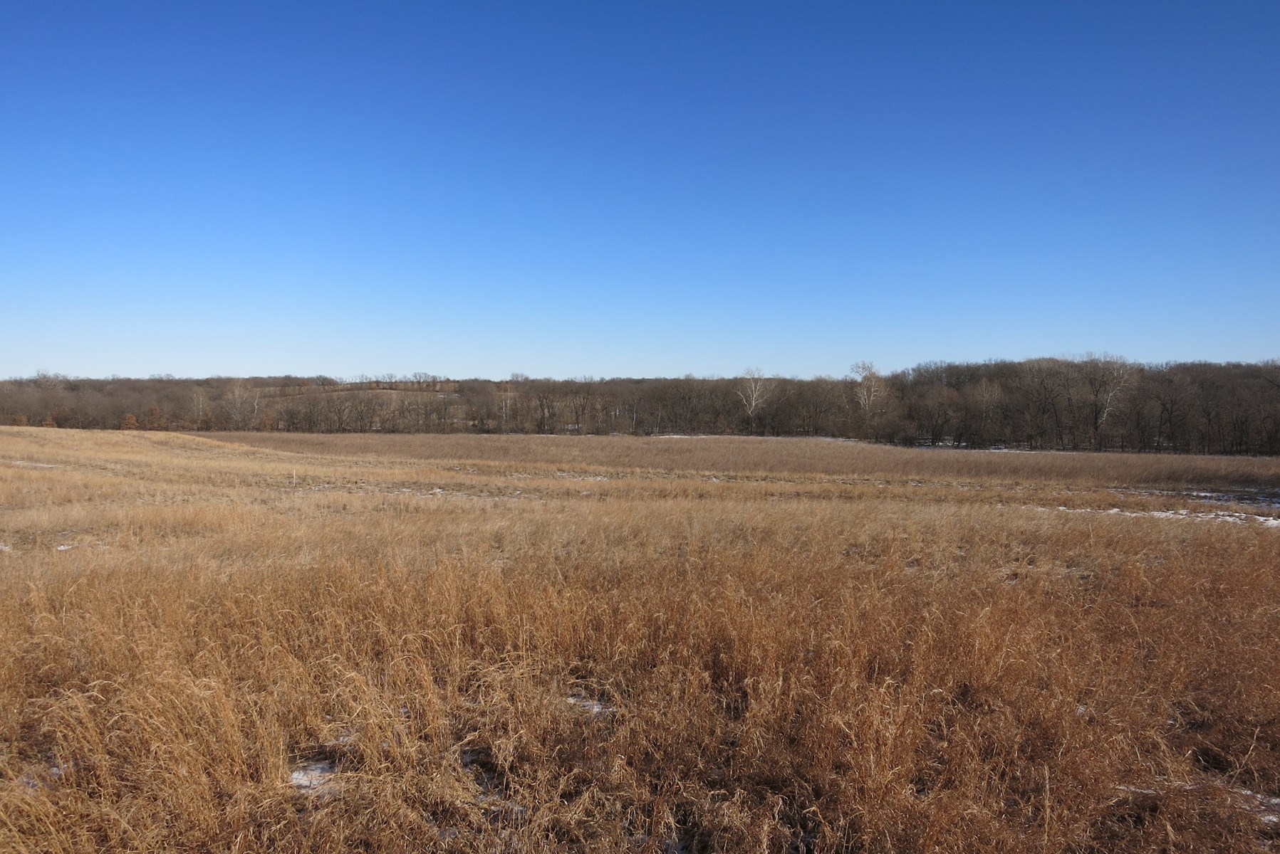 Gentry County Land Auction – March 2, 2019