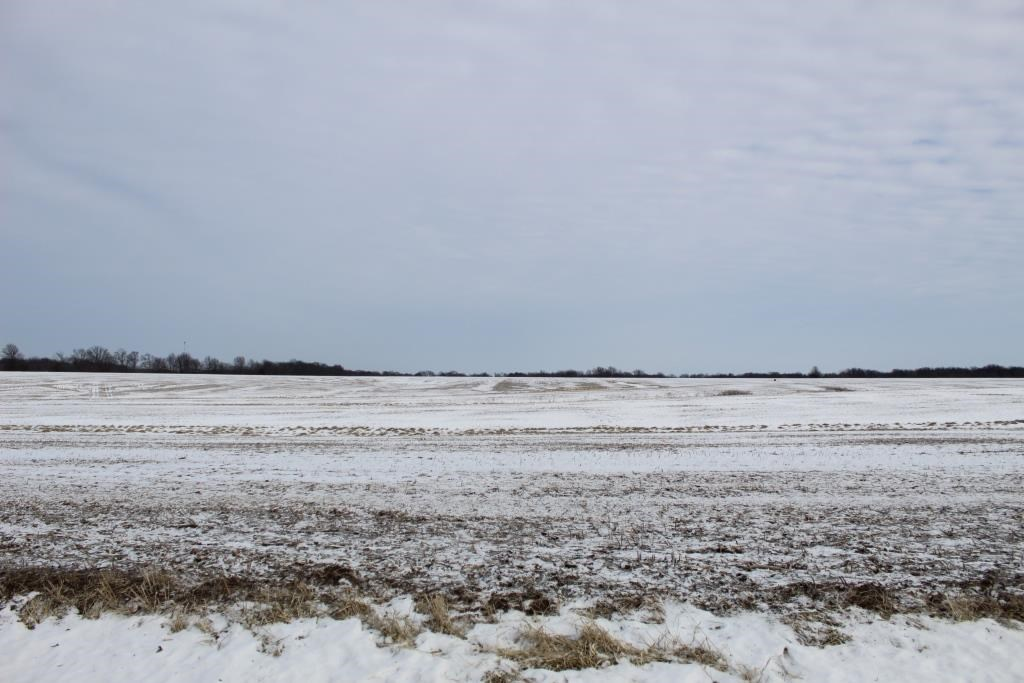 Tillable Row Crop Farm Land Auction Boone County MO