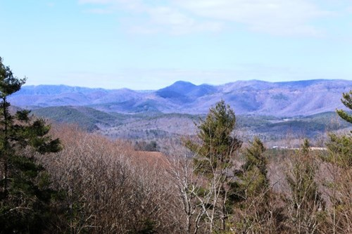 51.38  ACRES OF LAND  LOCATED IN PATRICK COUNTY, VIRGINIA