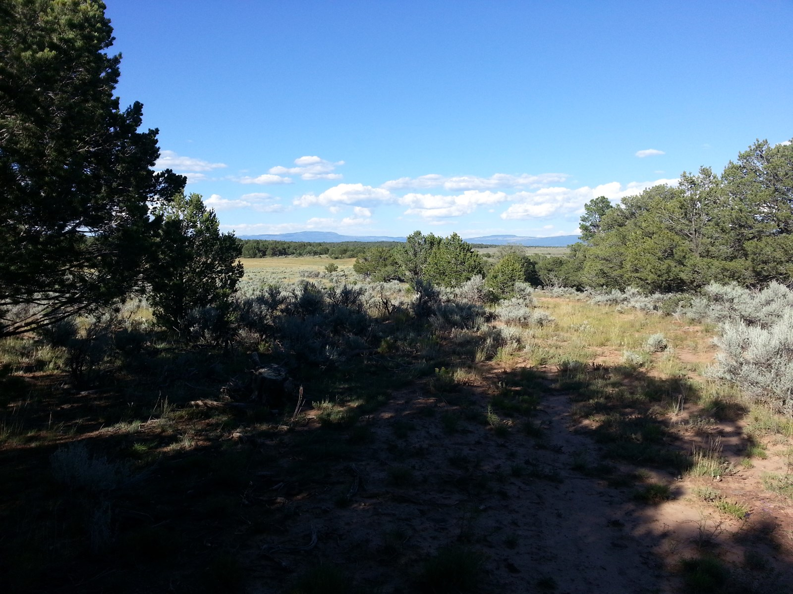 Land for Sale Northern NM