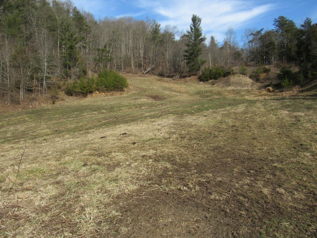 Recreational Farm Land And Home Site For Sale In Chilhowie