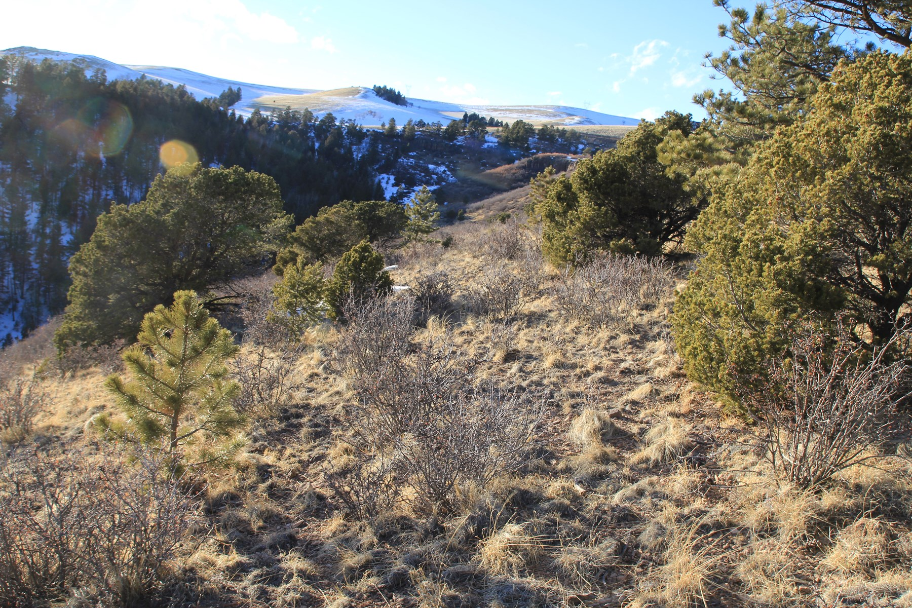 36+ Acres in Fremont County