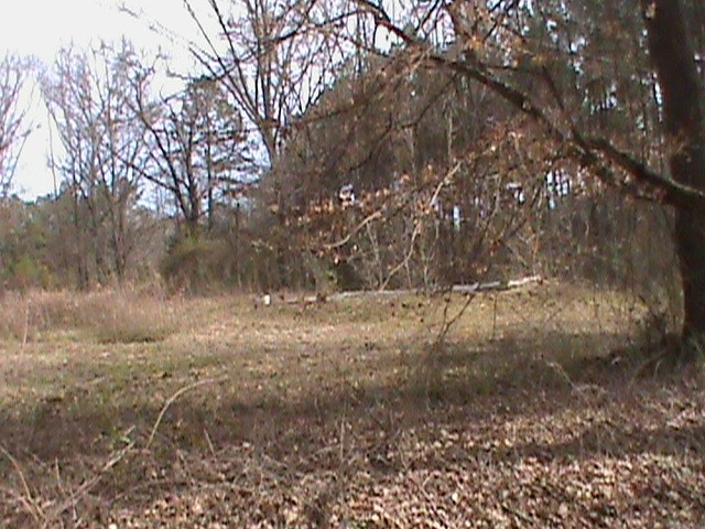 Henderson, TX, Rusk County, TX Land For Sale