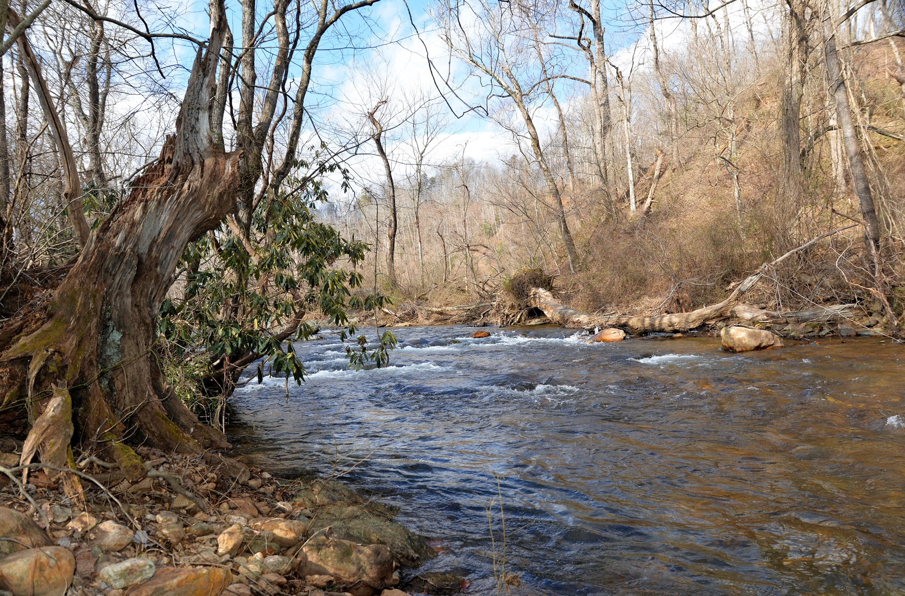 Land for sale on Mitchell River in Dobson