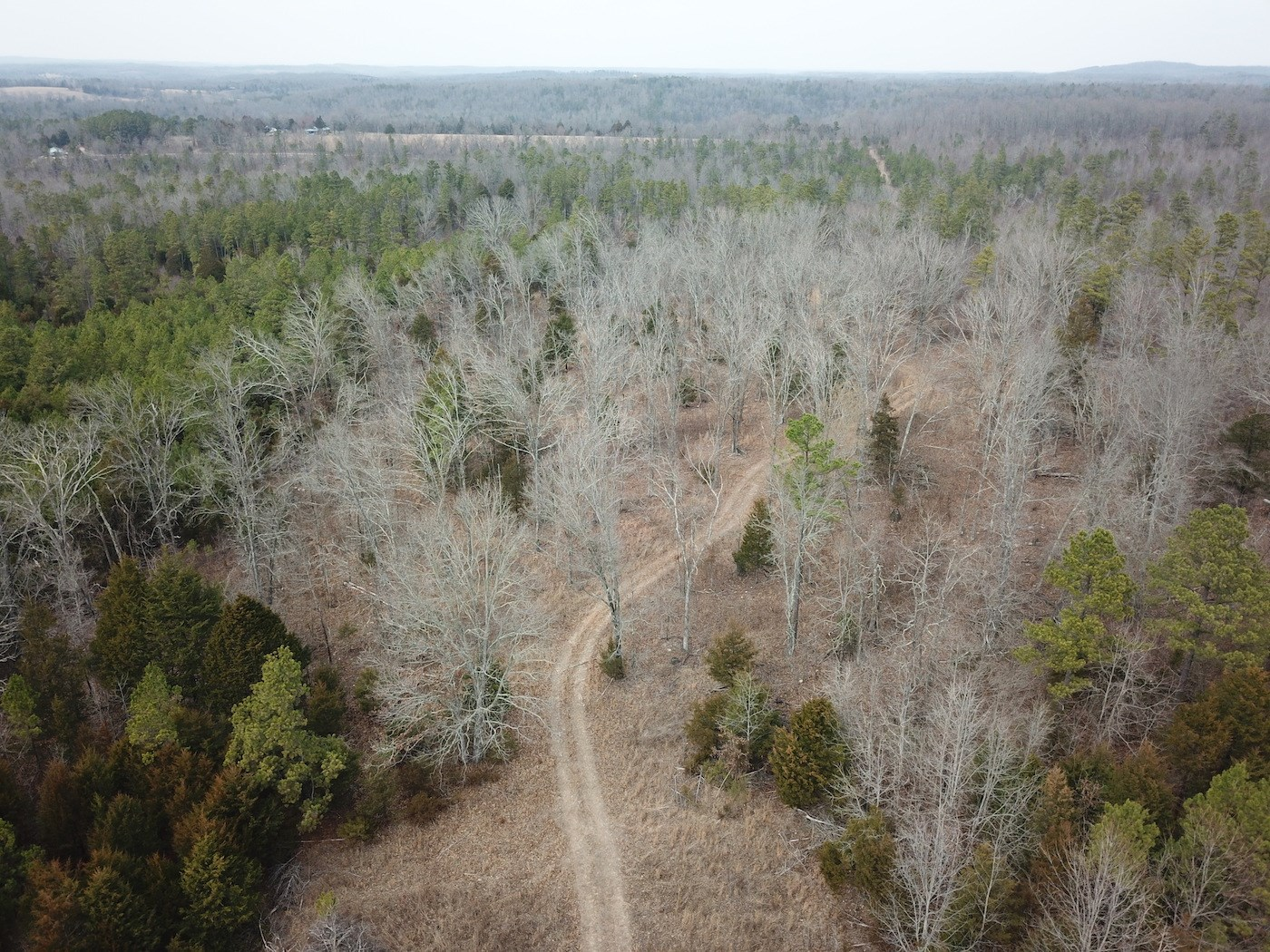 Hunting Property for Sale in South Central Missouri
