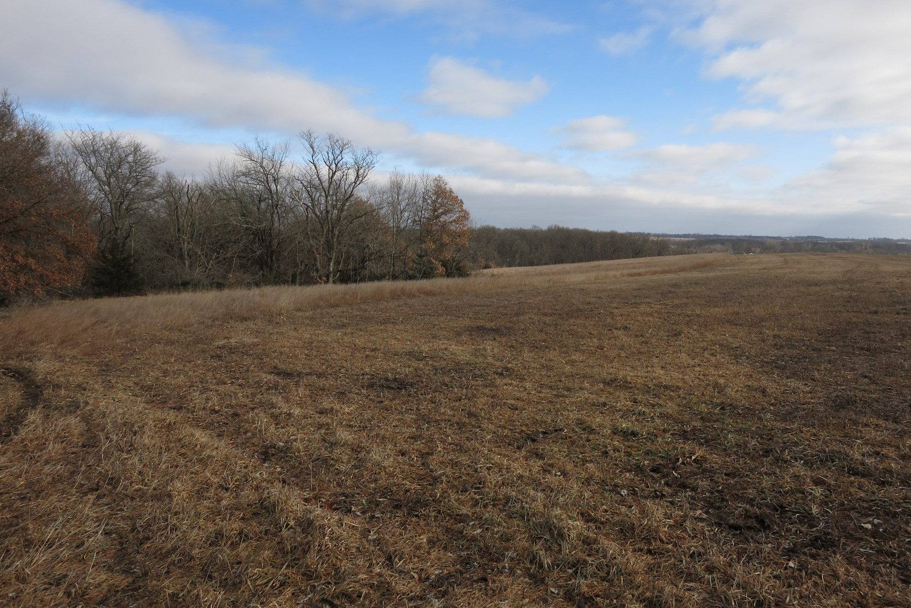 Land for Sale in Daviess County