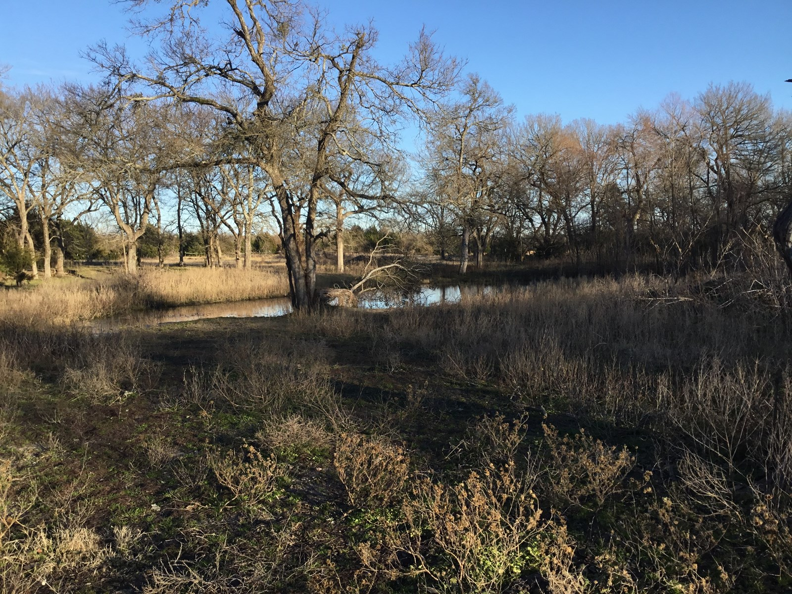 FARMERSVILLE, TEXAS LAND FOR SALE