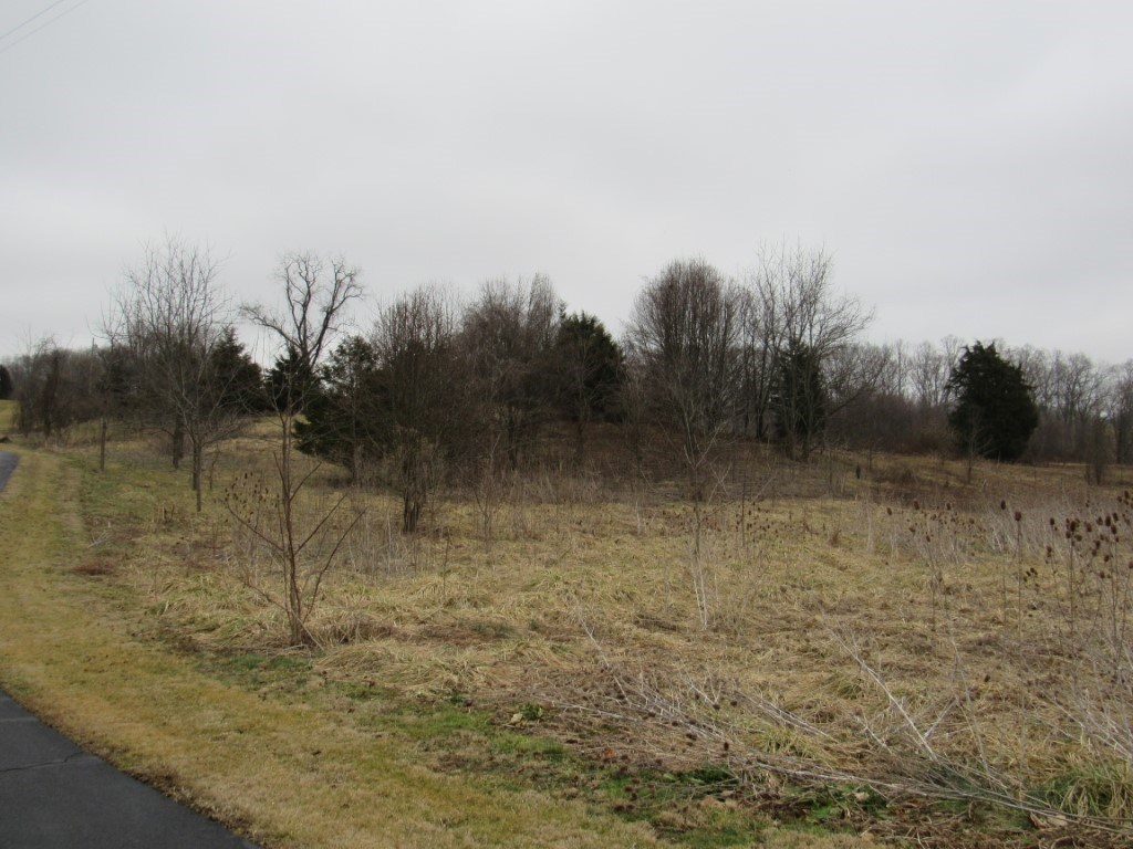 Great Building Lot In The Town Of Abingdon Limits