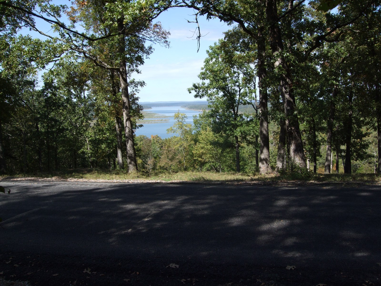 LAKEVIEW LOTS OVERLOOKING LAKE BULL SHOALS!