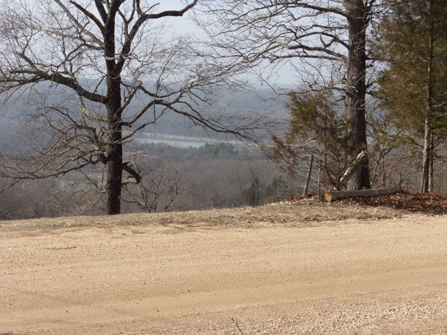LOT NEAR CRICKET CREEK MARINA ON TABLE ROCK LAKE!