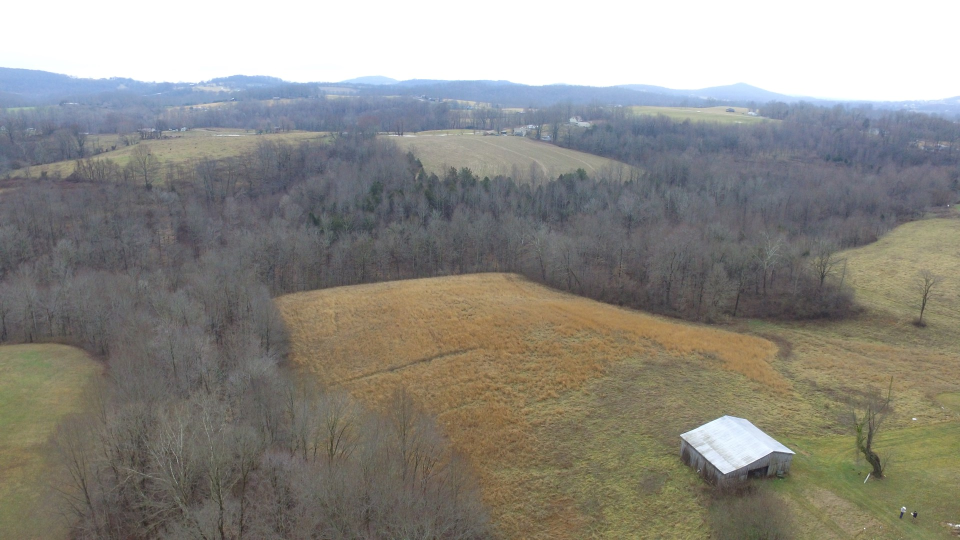 HOBBY FARM WITH BARN-PASTURE-SOME WOODS-SECLUDED-LIBERTY, KY