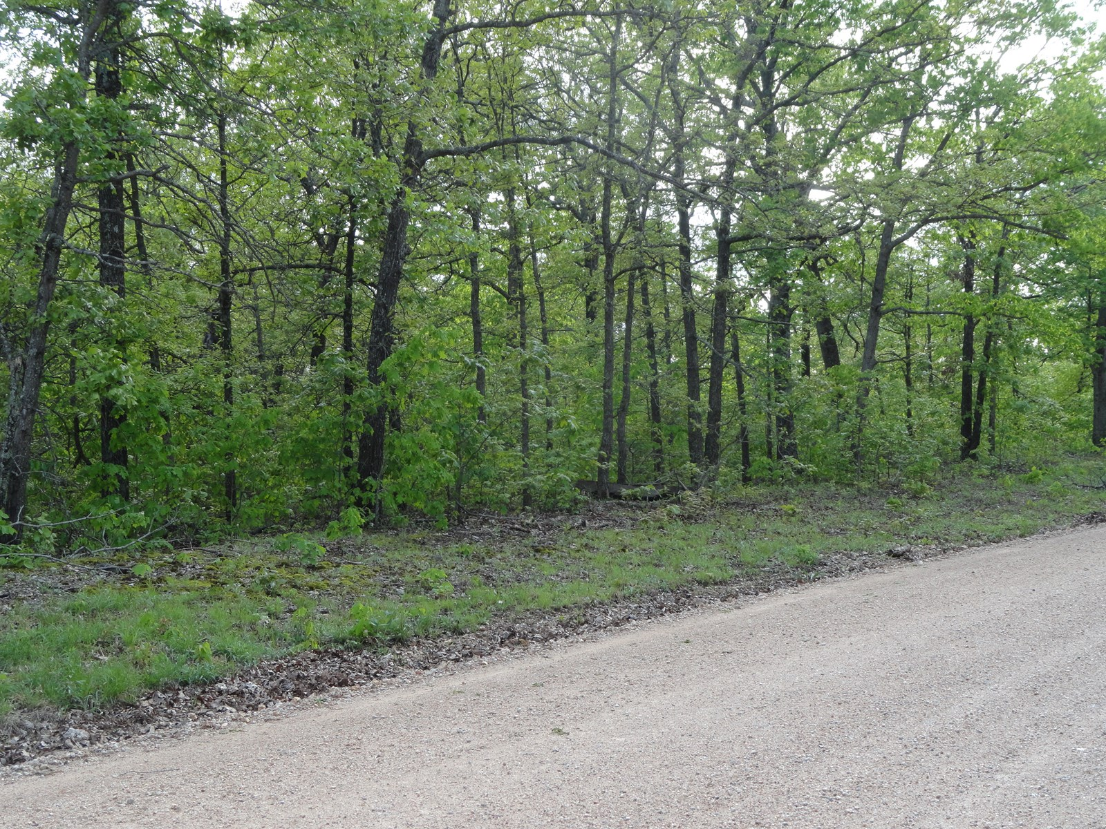 LAND FOR SALE IN CAMDEN COUNTY