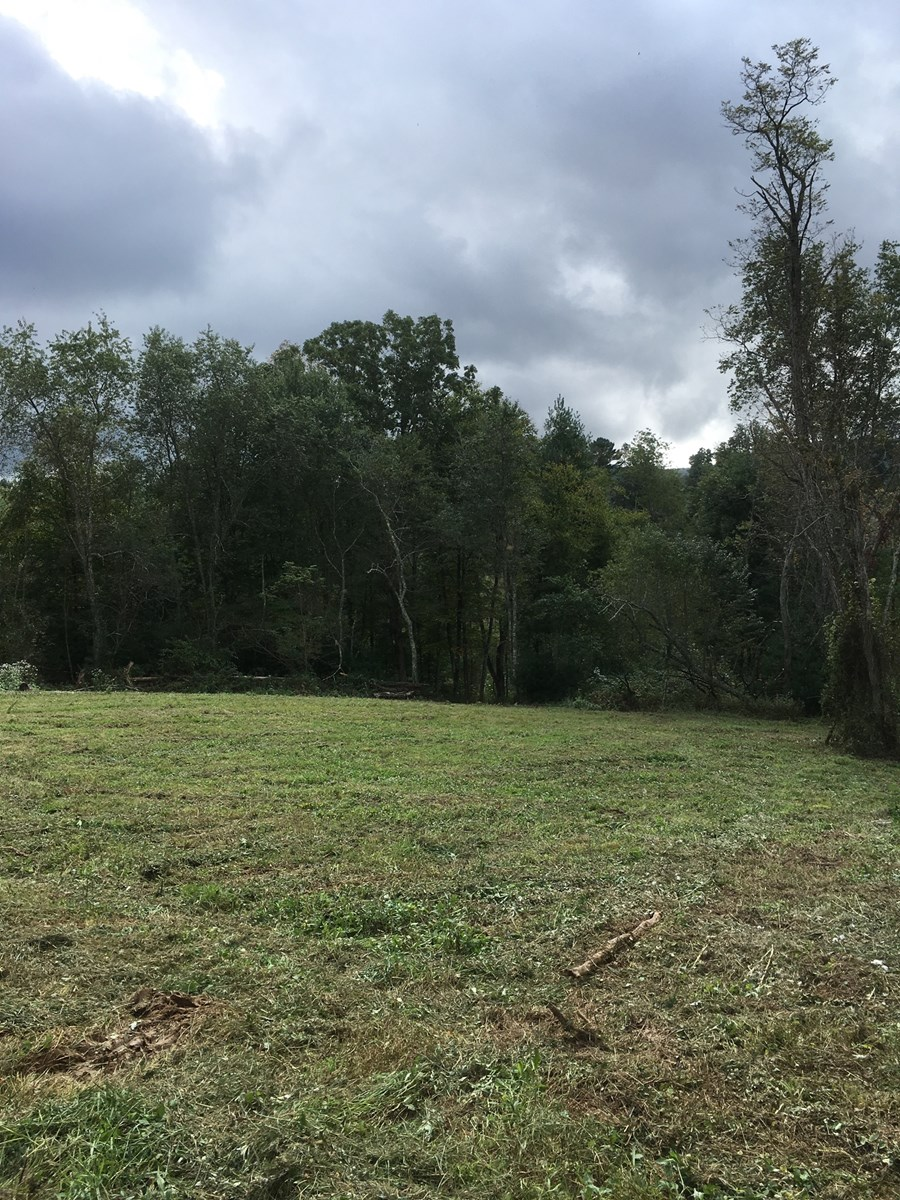 Unrestricted 10 Acres +/- Alleghany County - Stream