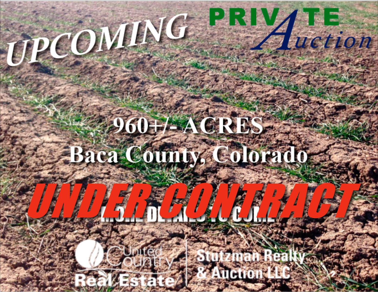 960+/- AUCTION ACRES OF DRYLAND FARMGROUND IN BACA COUNTY, CO